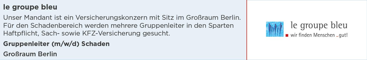 le groupe bleu, Stellenanzeige, Gruppenleiter Schaden, Großraum Berlin